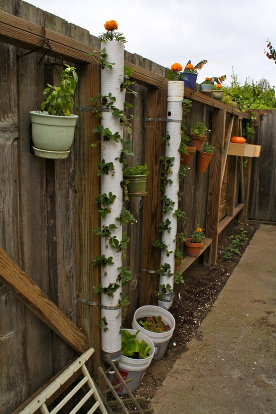 13 Low-Cost Gardening Projects With PVC Pipes
