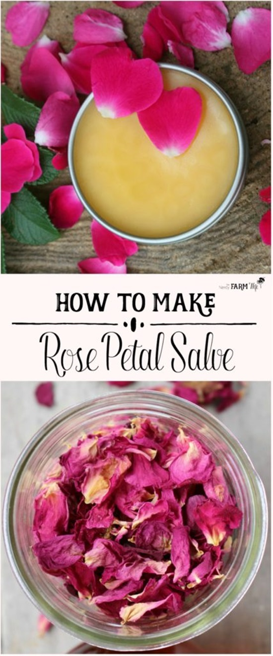 15 Homemade Wound Healing Salve Recipes