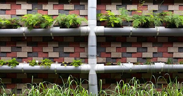 13 Low Cost Gardening Projects With PVC Pipes